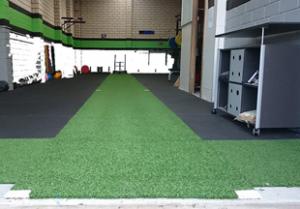 gym artificial grass